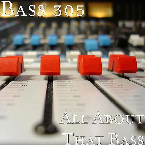All About That Bass by Bass 305