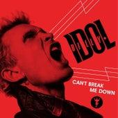 Can't Break Me Down by Billy Idol
