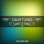 Calm Tunes, Vol. 01 by Various Artists