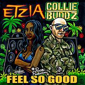 Feel So Good by Collie Buddz