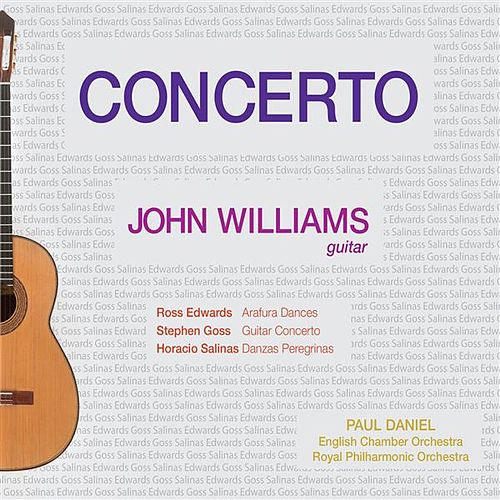 Concerto by John Williams (ES)