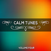 Calm Tunes, Vol. 04 by Various Artists