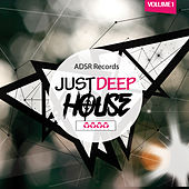 Just Deep-House, Vol. 1 by Various Artists
