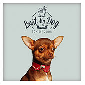 Lost My Dog 10 x 10 - 2005 by Various Artists