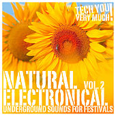 Natural Electronical, Vol. 2 (Underground Sounds for Festivals) by Various Artists