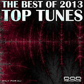 The Best of 2013 - Top Tunes by Various Artists