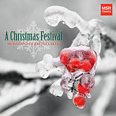 A Christmas Festival - 10 Holiday Favorites by Various Artists