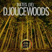 Djouce Woods by The Bates
