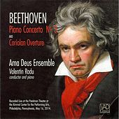 Beethoven Piano Concerto No. 3  (Live) by Various Artists