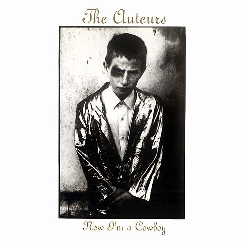 Now I'm a Cowboy by The Auteurs