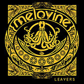 Leavers by Melovine
