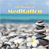 The Essence of Meditation by Various Artists