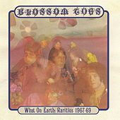 What On Earth: Rarities 1967-69 by Blossom Toes