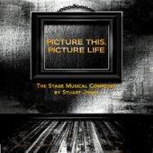 Picture This, Picture Life (Original Soundtrack) by Stuart Jones