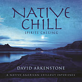 Native Chill by David Arkenstone