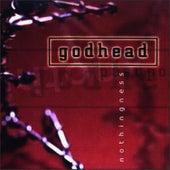 Nothingness by Godhead