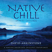Native Chill von David Arkenstone
