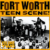 Fort Worth Teen Scene!, Vol. 2 by Various Artists