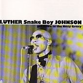 Get Down To The Nitty Gritty by Luther Snakeboy Johnson