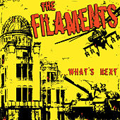 What's Next by The Filaments