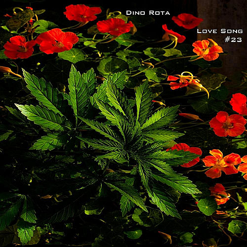 Love Song Number 23 by Dino Rota