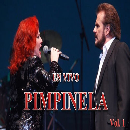 Pimpinela en Vivo, Vol. 1 by Pimpinela