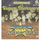 Homenaje a la Sonora Matancera Con la Sonora Americana by Various Artists
