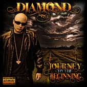 Journey to the Beginning by Diamond
