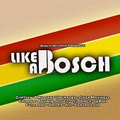Like a Bosch by Various Artists
