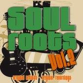 Soul Roots Vol. 2 von Various Artists