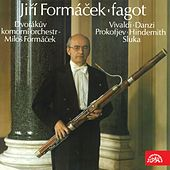 Vivaldi, Danzi, Prokofiev, Hindemith & Sluka: Fagot by Various Artists