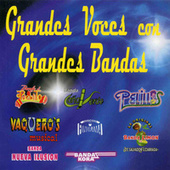 Grandes Voces Con Grandes Bandas by Various Artists