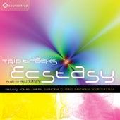 Trip Tracks: Ecstasy von Various Artists