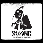 Devastation in the Void by Slang
