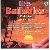 Hits Bailables, Vol. 18 by Various Artists