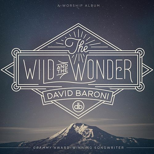 The Wild and the Wonder by David Baroni