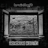 Underground Acoustics by Braintheft