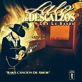 Rara Cancion De Amor by Lalo Y Los Descalzos