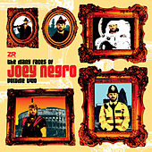 The Many Faces Of Joey Negro Vol.2 by Various Artists