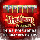 Pura Polvadera de Grandes Exitos by Hechizero De Linares
