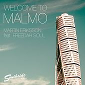 Welcome To Malmo (feat. Freedah Soul) by Martin Eriksson