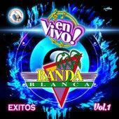 Exitos Vol. 1. Música de Guatemala para los Latinos (En Vivo) by Banda Blanca