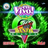 Exitos Vol. 2. Música de Guatemala para los Latinos (En Vivo) by Banda Blanca
