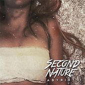 Labyrinth by Second Nature