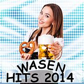 Wasenhits 2014 by Various Artists