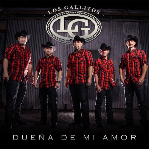 Dueña de Mi Amor by Los Gallitos