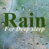 Rain for Deep Sleep by Rain for Deep Sleep