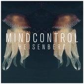 Heisenberg (Single Edit) by Mind Control