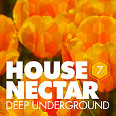 Underground House Nectar, Vol. 7 by Various Artists