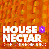 Underground House Nectar, Vol. 5 by Various Artists